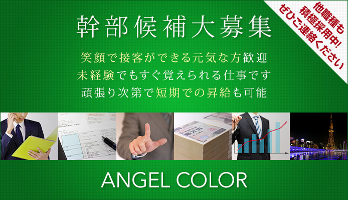 ANGELCOLOR